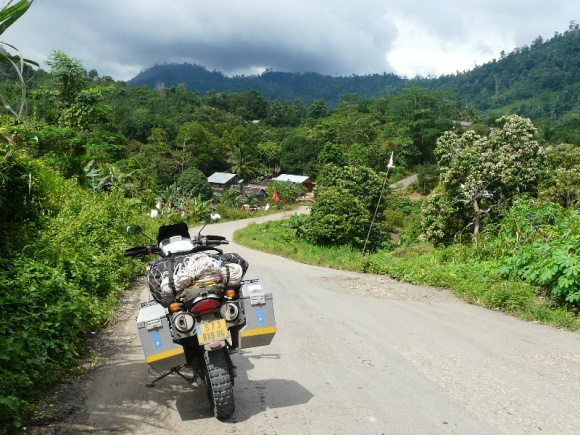 This is the kind of quiet country road of South Kalimantan that greeted me. Loved it.